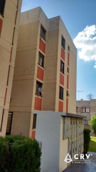 344238, Apartamento de 2 quartos, 48.0 m² para alugar no Residencial Pioneiros, São Pedro - Londrina/PR
