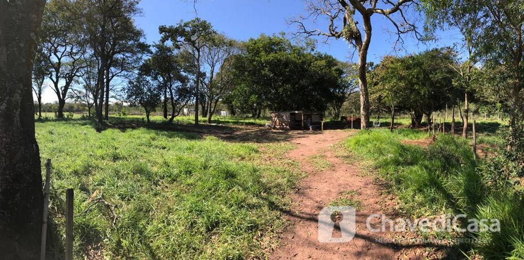 Parque Universitário
